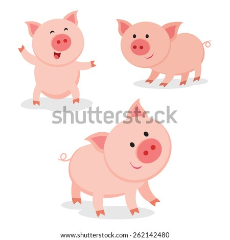 cute pigs cheerful pig funny