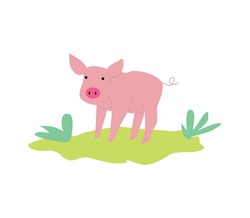 Cute pink pig or piglet cartoon character or icon, flat vector illustration isolated on white background. Farmers meat production emblem or logo element.