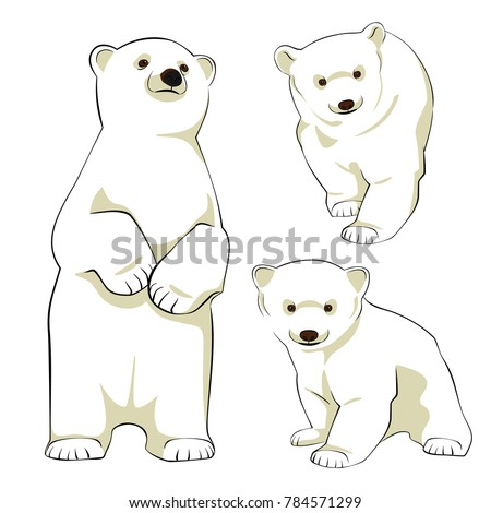 cute polar bear cubs vector