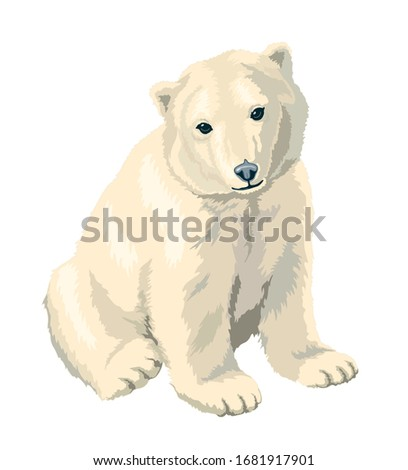 cute polar bear sitting vector