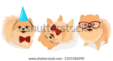 Free Cartoon Pomeranian Vector Download Free Vector Art Stock