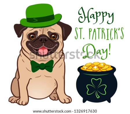 834eb84ba28 Cute pug dog in St. Patrick s Day costume  green bowler hat and bow tie