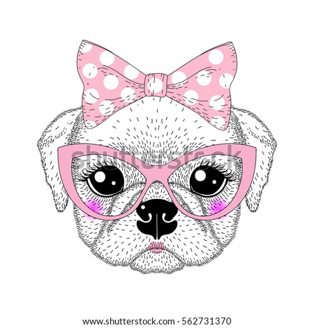 cute pug portrait with pin up