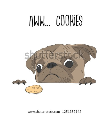 cute pug wanted a cookie funny