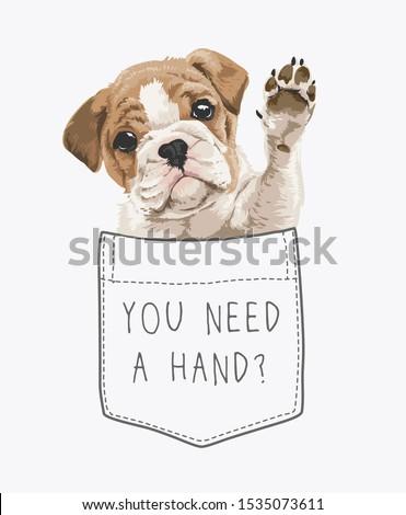 cute puppy in pocket illustration Foto stock ©