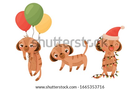 cute puppy with bunch of