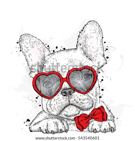 cute puppy with glasses heart