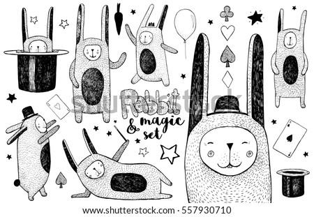 cute rabbit and magic set