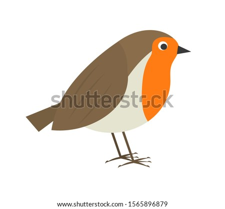 Cute robin bird. Vector illustration. Zdjęcia stock ©