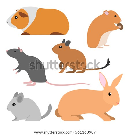 cute rodents  vector pet