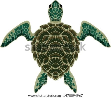 cute sea turtle vector