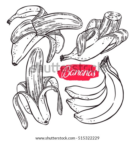 cute set of different bananas