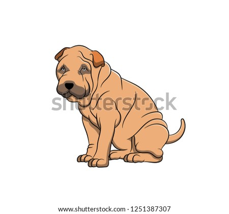 Cute Shar Pei Cartoon Dog. Vector illustration of purebred shar pei dog.