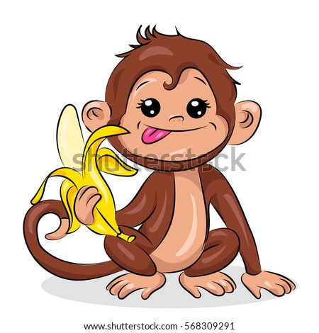 cute small crazy monkey at the white background
