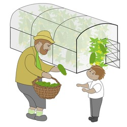 Cute summer picture. Old man in straw hat with basket of cucumbers  is treating boy with cucumber. Greenhouse is at the backgroung. Can be ads of greenhouses.