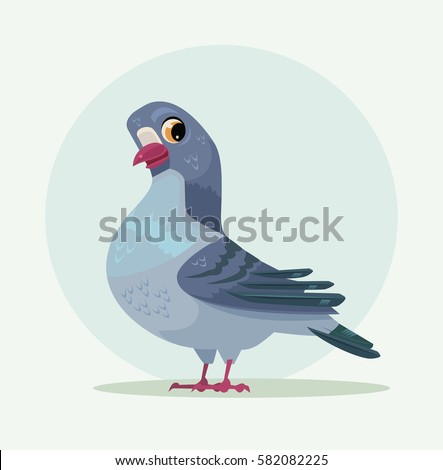 cute urban gray blue dove