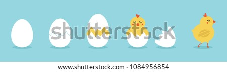 Cute vector cartoon illustration of step-by-step process baby chicken hatching from the egg. Funny and educational illustration for kids. Stockfoto ©