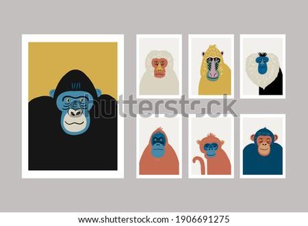 Cute vector primates in flat style. Chimpanzee, Orangutan, Gorilla, Lion-tailed macaque, Mandrill, Pygathrix roxellana, Macaca fuscata - primates cartoon character. Vector print in modern style Photo stock ©