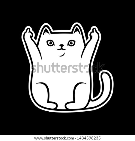 cute white cat animals showing