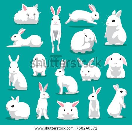 cute white rabbit poses cartoon