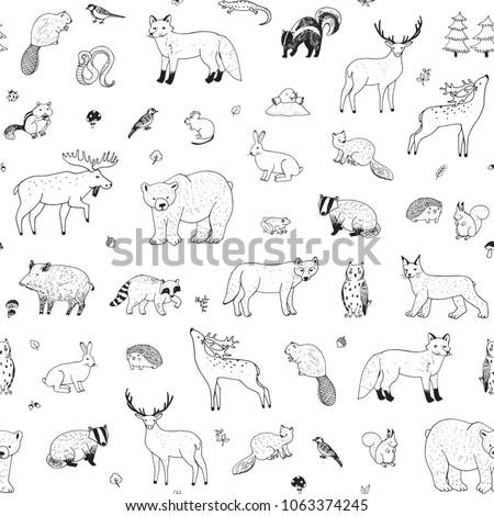 cute woodland forest animals