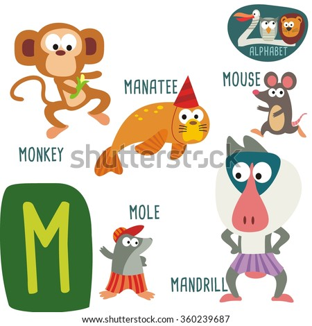 cute zoo alphabet in vector m