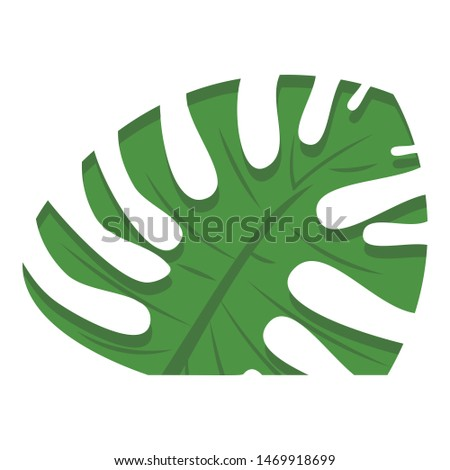 Cutted monstera leaf icon. Cartoon of cutted monstera leaf vector icon for web design isolated on white background