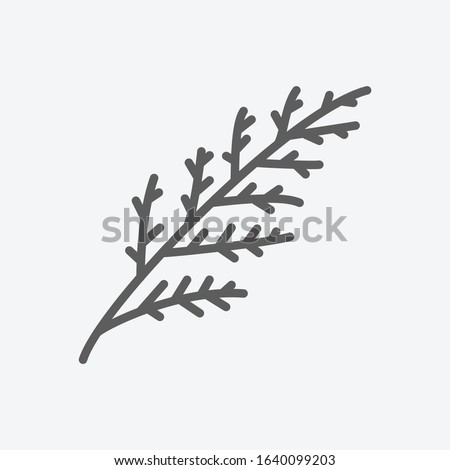 Cypress leaf icon line symbol. Isolated vector illustration of icon sign concept for your web site mobile app logo UI design. ストックフォト ©