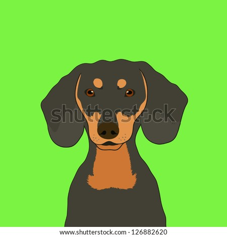 Dachshund, The buddy dog