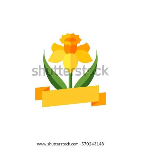 daffodil   floral emblem of