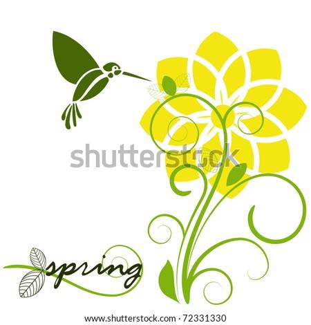 daffodil in spring with humming bird