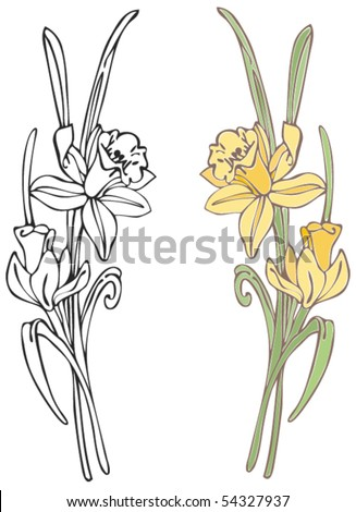 daffodils   click on my