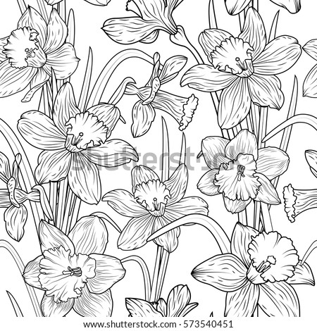 Daffodils narcissus dense outline sketch drawing floral seamless daffodils narcissus dense outline sketch drawing floral seamless pattern spring flowers black and white foliage mightylinksfo