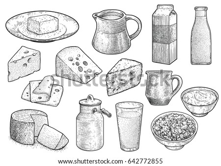 dairy product illustration ...