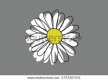 daisy doodle design hand drawn