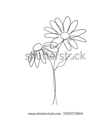 Daisy flower in continuous line art drawing style. Chamomile One line drawing art. Minimalist black linear sketch. Vector illustration Photo stock ©
