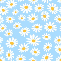 Daisy flower seamless on blue background illustration. Pretty floral pattern for print. Flat design vector.