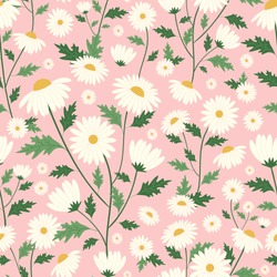 Daisy flower seamless pattern with pink background