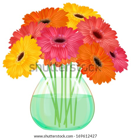 Daisy gerbera flower bouquet in  glass vase on  white background, vector