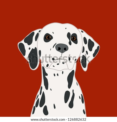 Dalmatian, The buddy dog