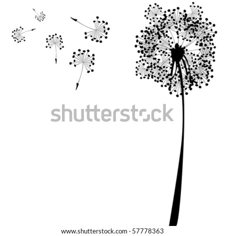 dandelion against white background, abstract vector art illustration