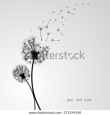 dandelion background in vintage
