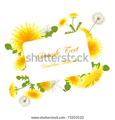 Dandelion blossoms frame. Illustration vector.
