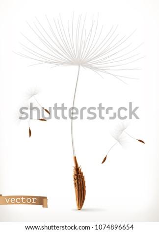 dandelion seeds  3d vector icon