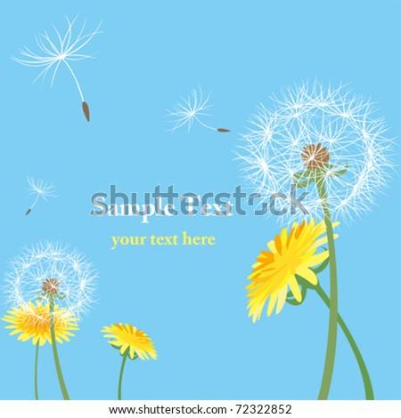 Dandelion seeds. Illustration vector.