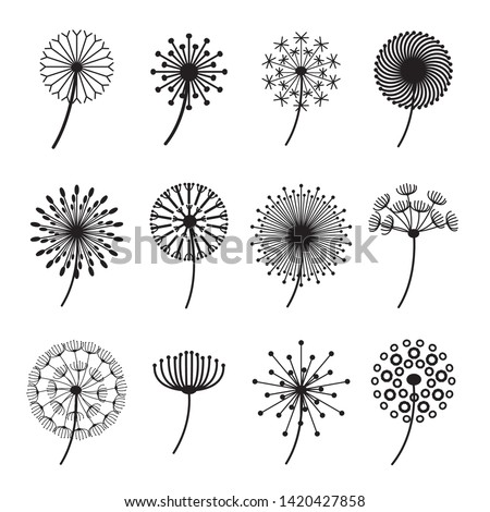 dandelion signs black thin line