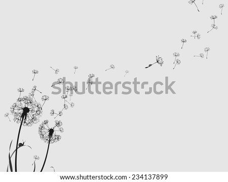 Dandelion silhouette snail and ladybug, black and white, horizontal format