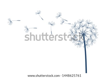 Dandelion vector. Make a Wish. Simple minimalist style.