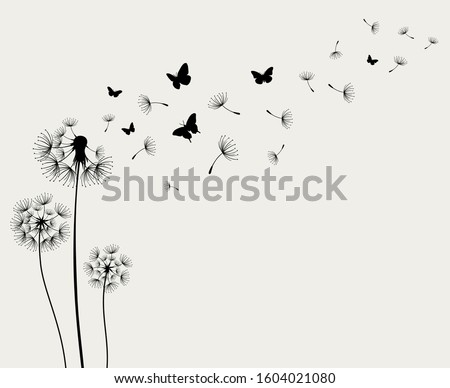 Dandelions and butterfly on the paper background Foto stock ©