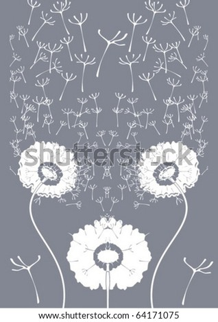 dandelions on a gray background